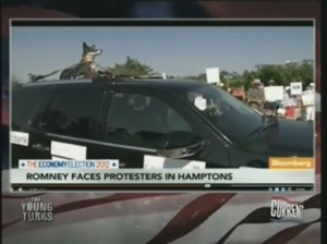 Fake dog on the roof of a protester's car